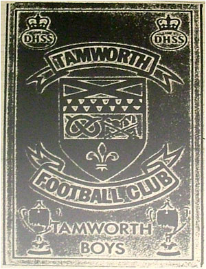Tamworth Boys and The DHSS – 'Tamworth Boys'